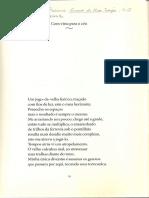 TERRON 2 textos Curva de rio sujo.pdf