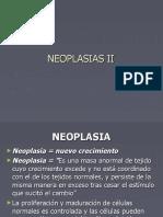 Neoplasias II 2016 PDF