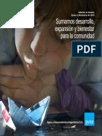 Informe Al Usuario 2010