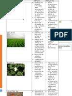 La Biotecnologia en La Agricultura