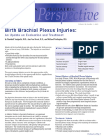 Birth Brachial Plexus Injuries Update