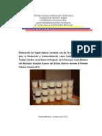Proyecto de Mision Ribas Yogurt