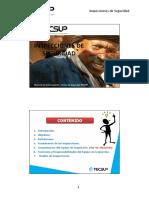 78486147-Presentacion-Final-Inspecciones-de-Seguridad.pdf