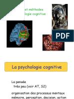 BLOC4 Psychologie Cavanagh2013