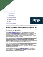 Actividad Agricola