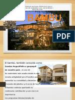 Bambú Tecnologia de Materiales