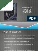 Sinapsis y Tipos de Sinapsis