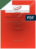 INFORME FINAL DSI Ing. Sistemas Huncuy Roca Gersson