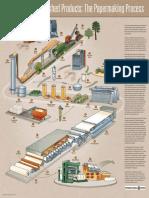 PaperProcess_piping.pdf