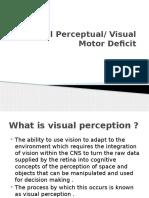 Visual Perceptual-1.pptx