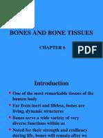 Chap6 Bone