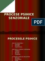 procesele_psihice_senzoriale
