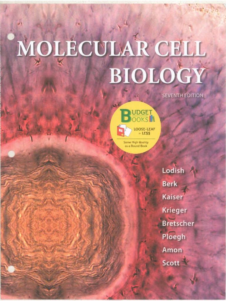 Molecular Biology Weaver Ebook