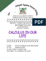 Calculus (Addmath)