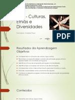 culturasetniasediversidades.pdf