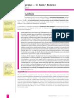 41057383-El-Salon-Mexico-Analysis.pdf