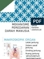 Blok 8 Sistem Peredaran Darah satu.pptx