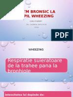 ASTM BRONSIC LA COPIL.pptx