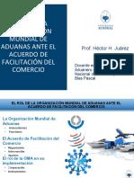 EL ROL DE LA ORGANIZACIÓN MUNDIAL DE ADUANAS ANTE EL ACUERDO DE FACILITACIÓN DEL COMERCIO