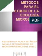 137655418 Metodos Para El Estudio de La Ecologia Microbiana