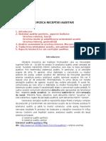 Audit IV