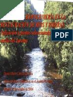 Bioingenieria Reatauracion Rios_2004