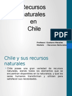 Recursos Naturales y Chile