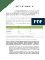 CIRCUITOS NEURONALES 1.docx