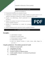 46025874 Audit Comptable Et Financier