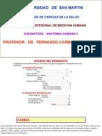 166713791-Craneo-y-Cara.pptx