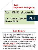 3. cellular response to injury.pptx