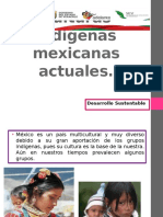 Culturas indígenas mexicanas actuales.pptx