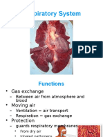 6_Respiratory.ppt