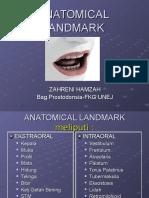 Anatomical Landmark