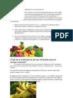 La Importancia de Los Vegetales en La Alimentación