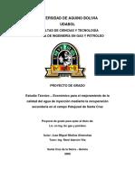 CAMPO PATUJUSAL.pdf