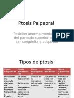 Ptosis Palpebral.pptx