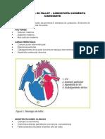 Cardiopatías Congenitas-Embriología, Resúmen Para Examenes