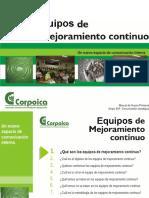 Manual de Grupos de Mejoramiento Continuo UV 04-04-084