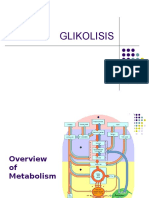 2. Metabolisme KH (Glikolisis)