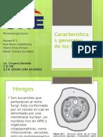 Características-generales-de-los-hongos-1