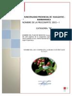 PLAN DE NEGOCIO CAFE NATUFRUTALES EL TUCO PDF.pdf