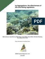 Grouper Spawning Aggregations