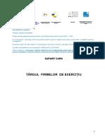 CONDITII-targul-fe.pdf