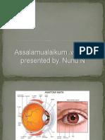 Slide Hipermetropia Nunu
