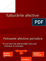 Tulburarile_afective.ppt