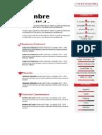 plantilla-curriculum-vitae-14.doc