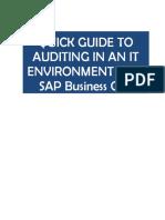 UE SAP Auditing