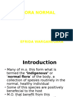 278278_Flora Normal, Pathogenesis of Bacterial Infection