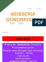 neisseria gonorrhoea